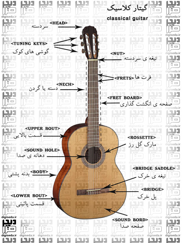 قیمت گیتار رودریگز